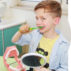 Junge putzt sich beim Kinderzahnarzt die Zähne - Zahnprophylaxe
